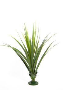 Ananas Pandanusbladplant, H: 140cm