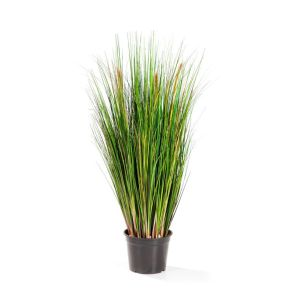 Gras met pluim, H: 90cm