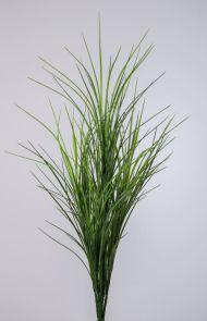 Mountain gras Groen, H: 66cm