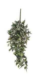 Tradescantia geel/groen, L: 40cm