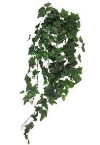 Hedera Groen, L: 86cm