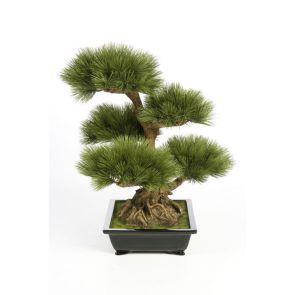 Pinus Bonzai (kunst), H: 60cm