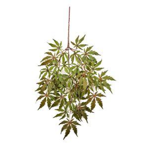 Japanese Maple - Vlamvertragend behandeld