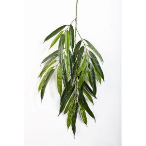 Deluxe Longifolia Spray - Vlamvertragend behandeld, H: 68 cm