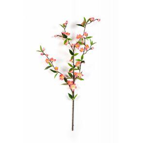 Cherry Blossom Spray Rose, H: 64 cm