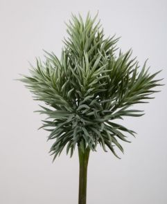 Pine Bush, H: 32cm