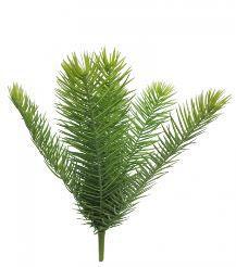 Areca palm steker, H: 40cm