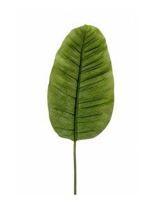Bananenblad, H: 92cm