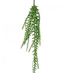 Hanging leaf bush, H: 130cm