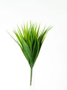 Gras bush, H: 35cm