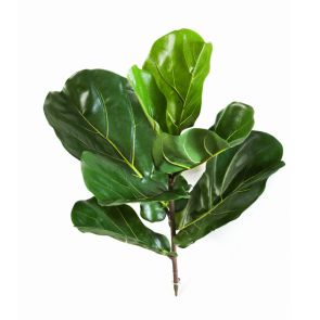 Fiddle Leaf, L: 58cm