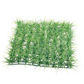Gras, 27 x 27 cm