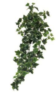 Ivy Chicago Hanger, L: 86cm