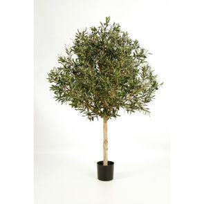 Olijfboom Topiary, H: 180cm