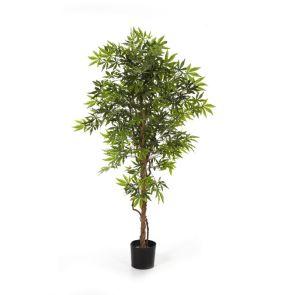 Japanese Maple Groen, H: 150 cm