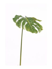 Monstera Leaf 80 cm, Green