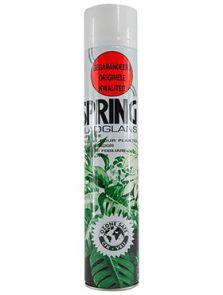 Bestrijding- En Glansmiddelen, Spring Bladglans 750 ml (1 st.)