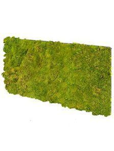 BioMontage, Acoustic Moss Panel 100% Flattmoss, L: 28cm, H: 5cm, B: 58,5cm