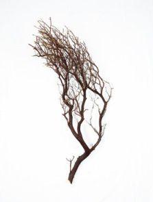Decowood, Manzanita bruin, L: 90cm