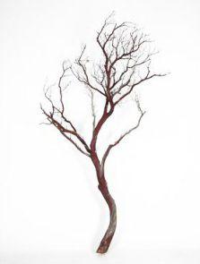 Decowood, Manzanita bruin, L: 180cm