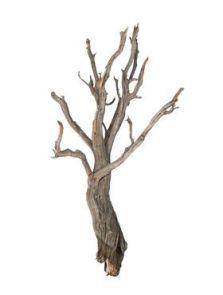 Decowood, Ghostwood raw, L: 90cm