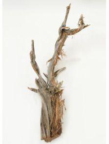 Decowood, Ghostwood raw, L: 120cm