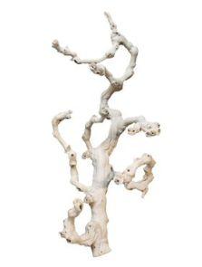 Decowood, Grapewood sandblasted branchy, L: 60cm
