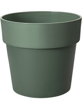 b for original round leaf green diam 18cm h 165cm