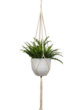 bagdad rope for hanger white pot diam 10 21 cm l 120cm