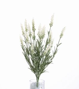 Lavendel wit, H: 45cm UV & Waterproof