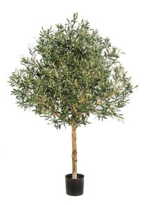 Natural olive topiary, Tree, H: 150cm