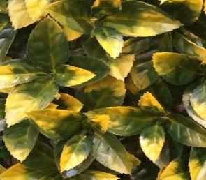 Hulst bont, B: 50 cm, L: 50cm, UV & Waterproof