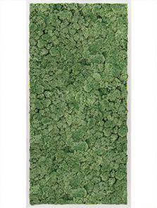 Mosschilderij, Aluminium 100% Rendiermos (Mosgroen), L: 120cm, H: 6cm, B: 60cm