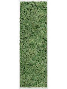 Mosschilderij, Aluminium 100% Rendiermos (Mosgroen), L: 40cm, H: 6cm, B: 120cm