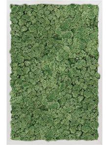 Mosschilderij, Aluminium 100% Rendiermos (Mosgroen), L: 60cm, H: 6cm, B: 40cm