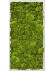 Mosschilderij, Aluminium 100% Platmos, L: 80cm, H: 6cm, B: 40cm