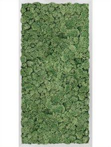 Mosschilderij, Aluminium 100% Rendiermos (Mosgroen), L: 40cm, H: 6cm, B: 80cm