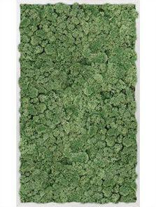 Mosschilderij, Aluminium 100% Rendiermos (Mosgroen), L: 100cm, H: 6cm, B: 60cm