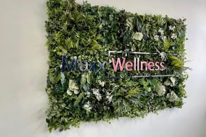 Maxx Wellness