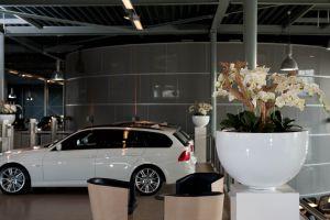 Renova BMW