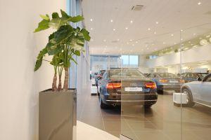 De Waal Audi