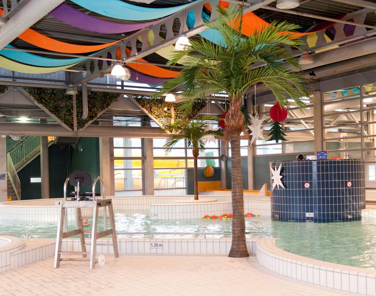 Zwembad de vallei plantenman.nl