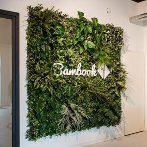 Plantenwand Bambook Ede