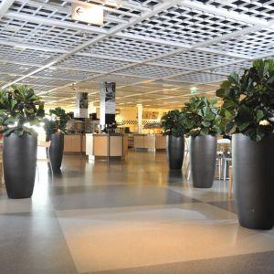 Hoge antraciete partner super plantenbakken van 134 cm.