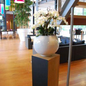 Colour Business Centre